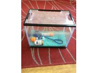 Fish tank with urns you need!