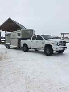 Horse Trailering - safe, reliable, and insured Kitchener / Waterloo Kitchener Area image 2