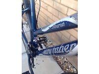 Gary Fisher city bike