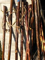 *******Walking sticks and canes******************