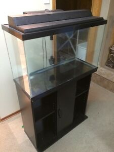 15 gal (60litre) Fish tank and stand for sale