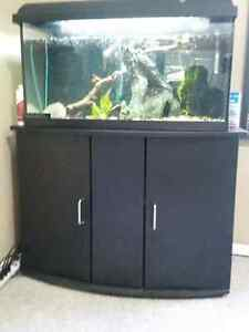 CHEAP 30 gallon TANK with Aquaclear FILTER, HEATER, and stand