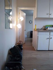 1 Bedroom Downtown Kingston Summer sublet (May1st-August31st)