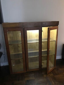Antique Bookcase with lights inside