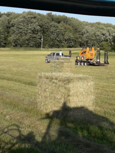 Small square bales of hay and straw