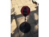 Free standing punch ball