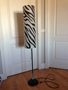 Zebra lamp and mat
