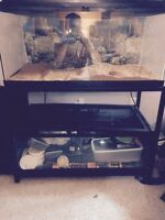 2 reptile tanks stacked with stand
