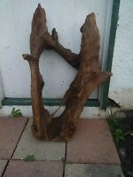 Driftwood New large piece of Malaysian