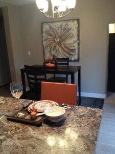 Beautiful newly renovated Condos for Rent in Watrous, SK. Regina Regina Area image 7