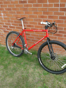 Looking for vintage XL hardtail mountain bike or frame
