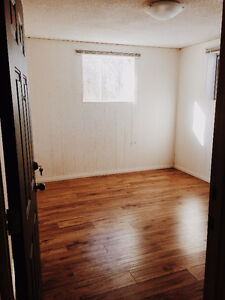 BRIGHT BASEMENT SUITE (UTILITIES INCLUDED)