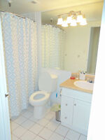 Avail Sept lovely one bedroom suite in South End