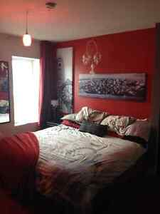 Appartement 4 1/2 rénové (16 Boulevard du Saguenay à Chicoutimi)