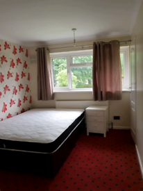 Double bedroom in a beautiful house for letting