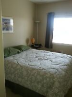 1 bedroom with private bath for Rent in Leduc
