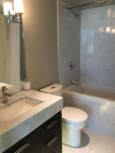 Mandarin Residences - Large NEW one bedroom suite - at Skytrain!