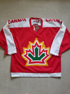 RARE Team Canada 1977 World Championships Souvenir Hockey Jersey
