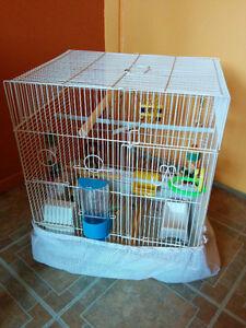 Cage blanche pour oiseau Saguenay Saguenay-Lac-Saint-Jean image 1