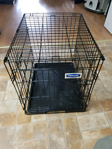 Pet safe Medium size Dog kennel