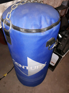 CENTURY Heavy Bag and Gloves