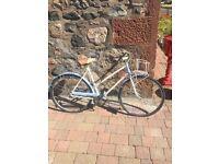 Classic sun bike