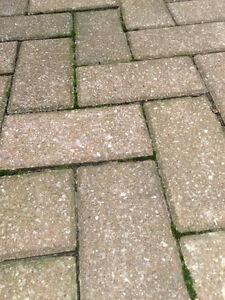 Pavage - Pavé uni de brique rectangulaire