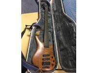 Warwick Thumb 5-String Fretless Bass NT