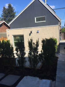 Bright and Beautiful, Newly Built, Laneway House