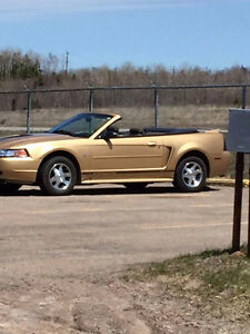 2000 Ford Mustang excellent Convertible