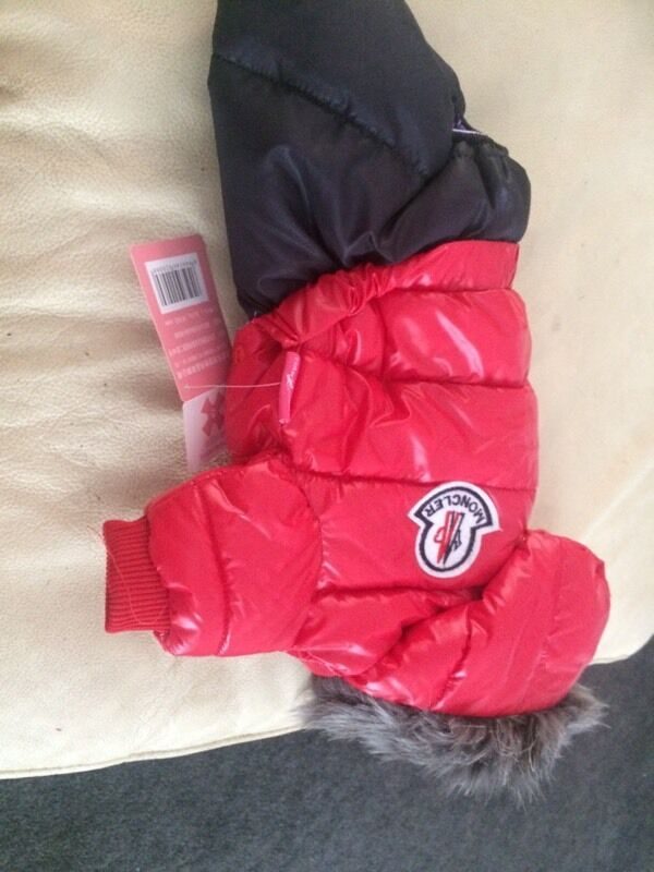 moncler jacket for dogs