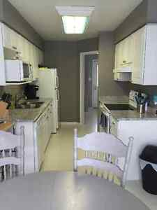 3 Bedroom townhouse for rent London Ontario image 2