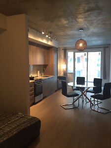 Furnished Downtown 3 1/2 (Open Bedroom) Condo For Rent - June 1