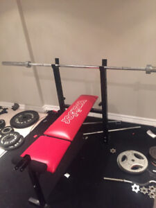 Weider bench and curling bar with weight