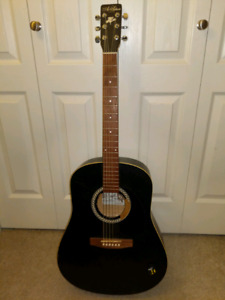 Art & Lutherie accoustic guitar.