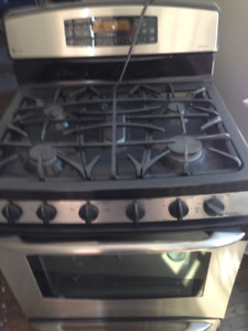 Stainless Steel Gas Range & Oven