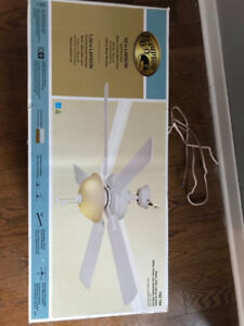Brand new in box ceiling fan