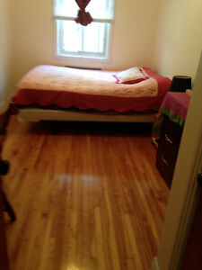 room for rent in 4/12 plateau 1srt May