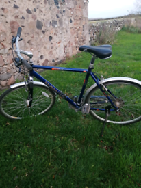 Gents Dawes kalahari Crossover bike