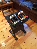 Northern Lights PowerBlock Dumbbell stand (up to 90lbs for each)