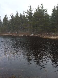 2 Lots for the price of one on Cockscomb Lake