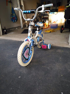 Girls Starter Bike with Training Wheels Call Ted at 905-387-6304