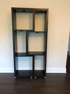 Living room twin shelves