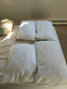 Four sleeping pillows! Must go asap!