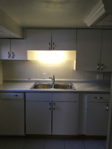 All Inclusive 1 Bedroom Bright Basement Apartment in Fort Erie