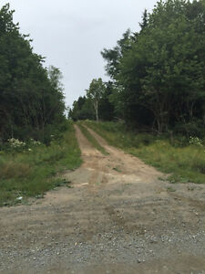 102 acres of Land for sale South Range Digby County Woodland