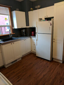 Bright 3 bdrm Aprt Close to Downtown PA $1600 + hydro,50%water
