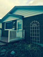4 bedroom house near Fleming college