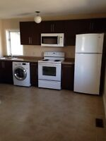 Great Location Downtown- 2 Bedroom