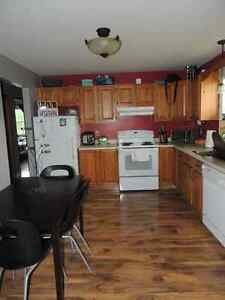 Newly renovated duplex available May 1st